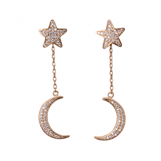 Yellow Gold Plated Star & Moon Earrings